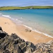 haven cove, cornwall — Stockfoto