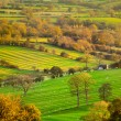 Susnet View of the Derbshire Dales — Stock Photo #30213189