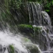 Forest Waterfall Close up — Stock Video