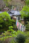 Casas decoradas con serpentinas de carpa — Foto de Stock