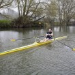 Single Scull on Avon River — Stock Photo #33595583