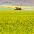 Stock Photo: Crop sprayer in a field