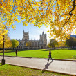 College Green and Bristol Cathedral — Stok fotoğraf