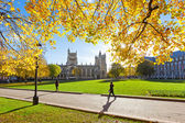 College Green and Bristol Cathedral — Stock Photo