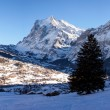 Stock Photo: Panoramic View of Grindelwald in Switzerland.