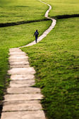 Long Flagstone Path Through Field — Stock Photo