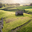 Rural view with meadows, sheep, dry stone walls and a traditiona — Stock Photo