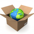 Earth globe in box — Stock Photo