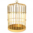 Golden cage — Stock Photo #22526525