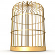 Golden cage — Stock Photo #22526589
