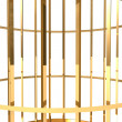 Golden cage — Stock Photo #22526603