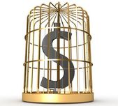 Dollar in cage — Stockfoto