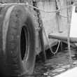 Tires at the port — Stock Photo