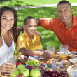 African American Family Eating Healthy Food Outside — Foto de Stock