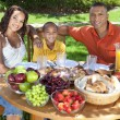 African American Family Eating Healthy Food Outside — Stock Photo