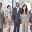 Stock Photo: Interracial Men & Women Business Team