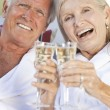 Happy Senior Couple Drinking Champagne White Wine - Stock Photo