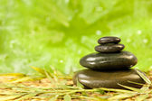 Spa Massage Hot Stones in Green Environment — Stock Photo