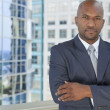 Successful African American Man or Businessman — Stock Photo #21600193