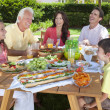 Parents Grandparents Children Family Healthy Eating Outside — Stock Photo #21644031