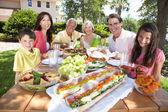 Familia de hijos de padres abuelos saludable comer fuera — Foto de Stock