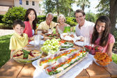 Parents Grandparents Children Family Healthy Eating Outside — Foto de Stock
