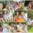 Multicultural Family Montage Outside Summer  — Stock Photo