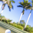 Golf Ball on Tee Tropical Golf Course - Stock Photo