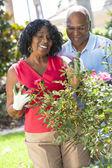 Senior African American Man Woman Couple Gardening — Stock Photo
