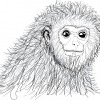 Royalty-Free Stock Photo: Monkey