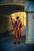 Cohors pedestris Helvetiorum a sacra custodia Pontificis. Piazza — Stock Photo