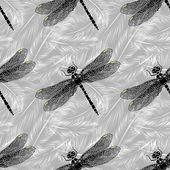 Seamless pattern with dragonflies and feathers — Wektor stockowy