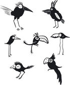 Funny birds vector set — Stock Vector