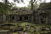 Angkor temple cambodia — Stock Photo