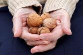 Sosteniendo las nueces — Foto de Stock