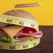 Stock Photo: Diet Hamburger