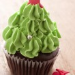 Christmas tree cupcake — Stock Photo