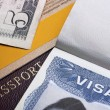 American Visa — Stock Photo
