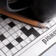 Crossword Puzzle — Stock Photo #36951943