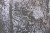Grey grunge crease paper — Stock Photo