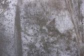 Grey grunge crease paper — Stock Photo