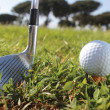 Golf putter and ball — Stock Photo