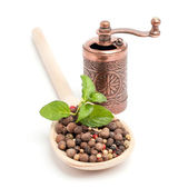 Peppercorns on a wooden spoon with grinder — Stock Photo