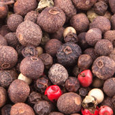 Mixture of Peppercorns — Stock Photo
