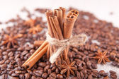 Star anise, cinnamon sticks and coffee beans — Foto Stock