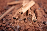 Cinnamon sticks with cocoa — Stock Photo