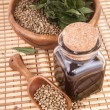 Stock Photo: Hemp oil in vessel with seeds