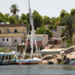 Nile Riverbank — Stock Photo