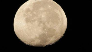 Moon Close-Up HD — Stock Video