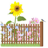 Wooden fence, flowers and blue tit — Stock Photo